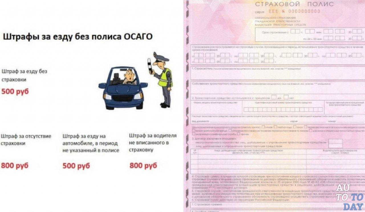 Реестр оптовых алкогольных лицензий санкт петербург