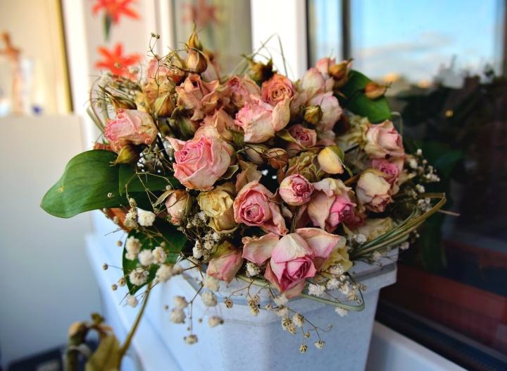 На какой счет поставить покупку цветов в офис